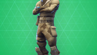 Photo of Armadillo Fortnite Skin