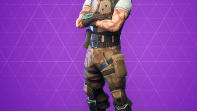 Photo of BattleHawk Fortnite Skin