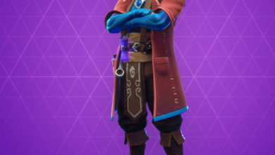 Photo of Castor Fortnite Skin