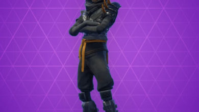 Photo of Cloaked Star Fortnite Skin