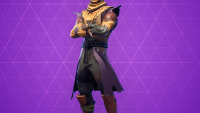Photo of Hay Man Fortnite Skin