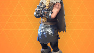 Photo of Magnus Fortnite Skin