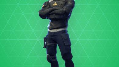 Photo of Verge Fortnite Skin