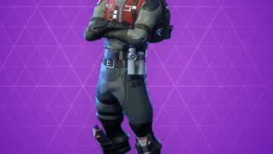 Photo of Wingman Fortnite Skin