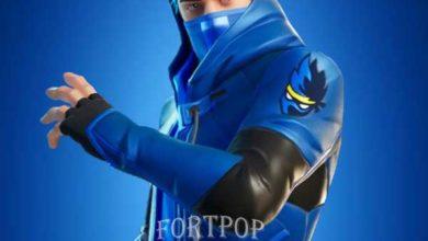Photo of Ninja skin Fortnite